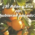 ¿Si Adán y Eva no hubieran pecado?
